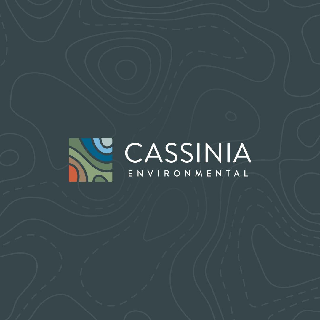 Cassinia2